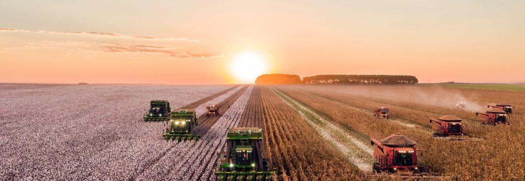 Сельское хозяйство. Лесное хозяйство. Охота. Рыбное хозяйство - 28 декабря 2020