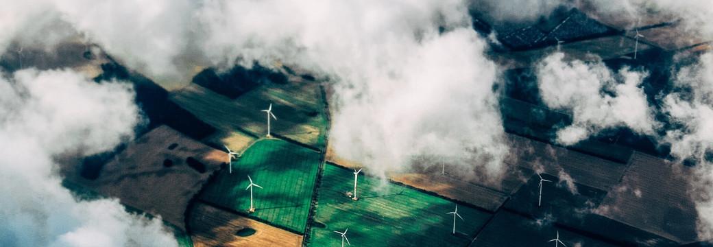 Экология - 29 июня 2020