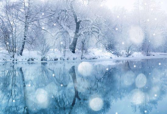 Январской стужи теплые моменты
