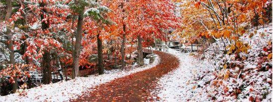 Зимнее дыхание ноября